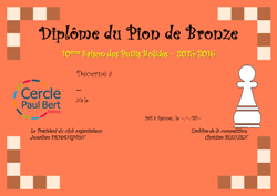 Pion_Bronze - Mini